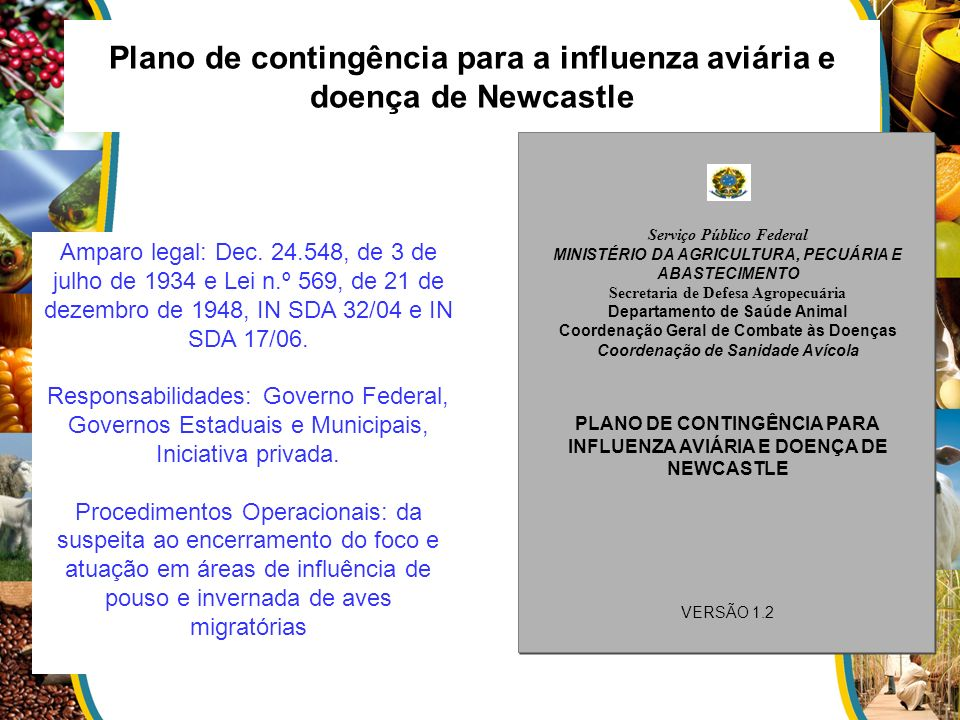 Plano de contingência para a influenza aviária e doença de Newcastle