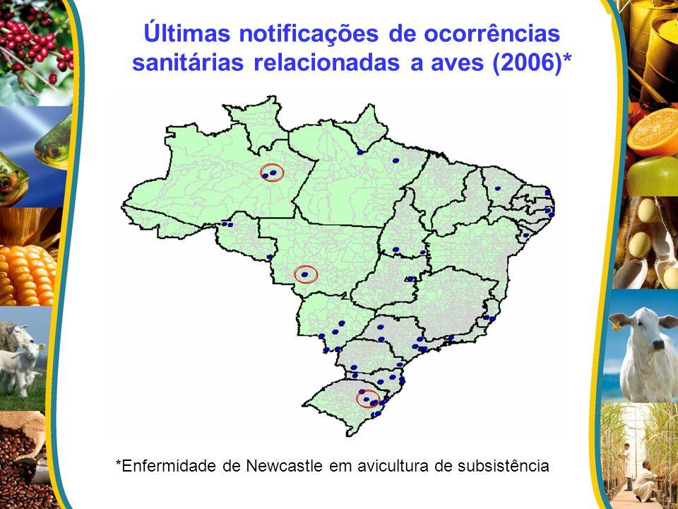 Últimas notificações de ocorrências sanitárias relacionadas a aves (2006)*