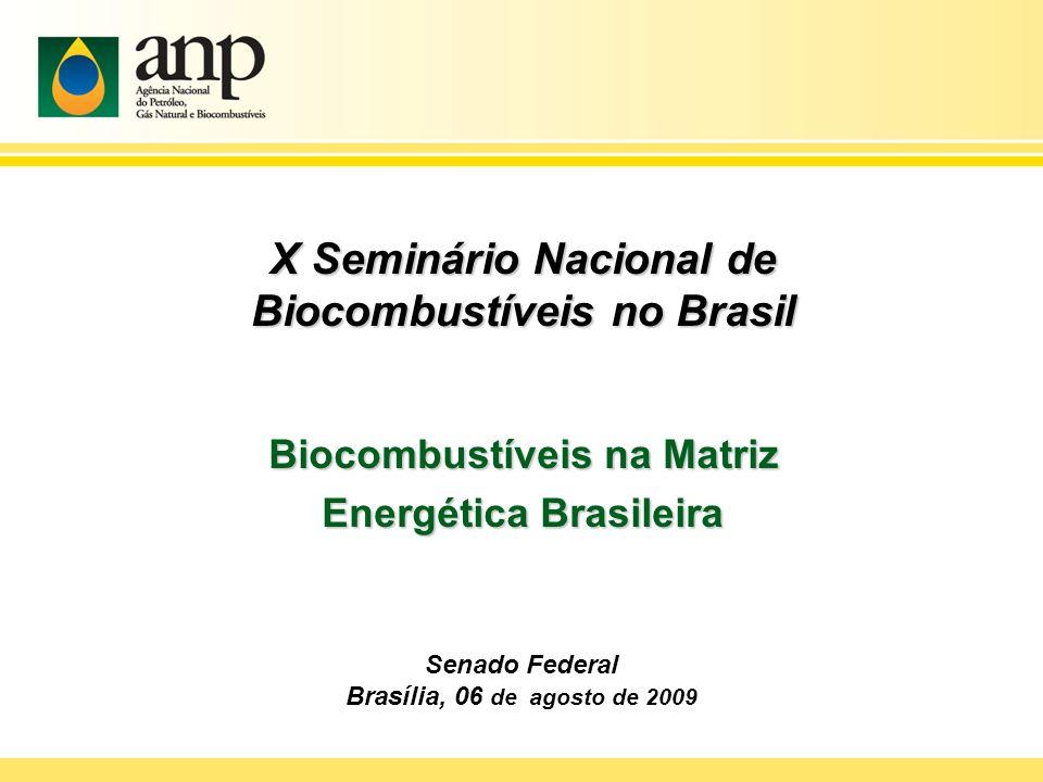 X Seminário Nacional de Biocombustíveis no Brasil