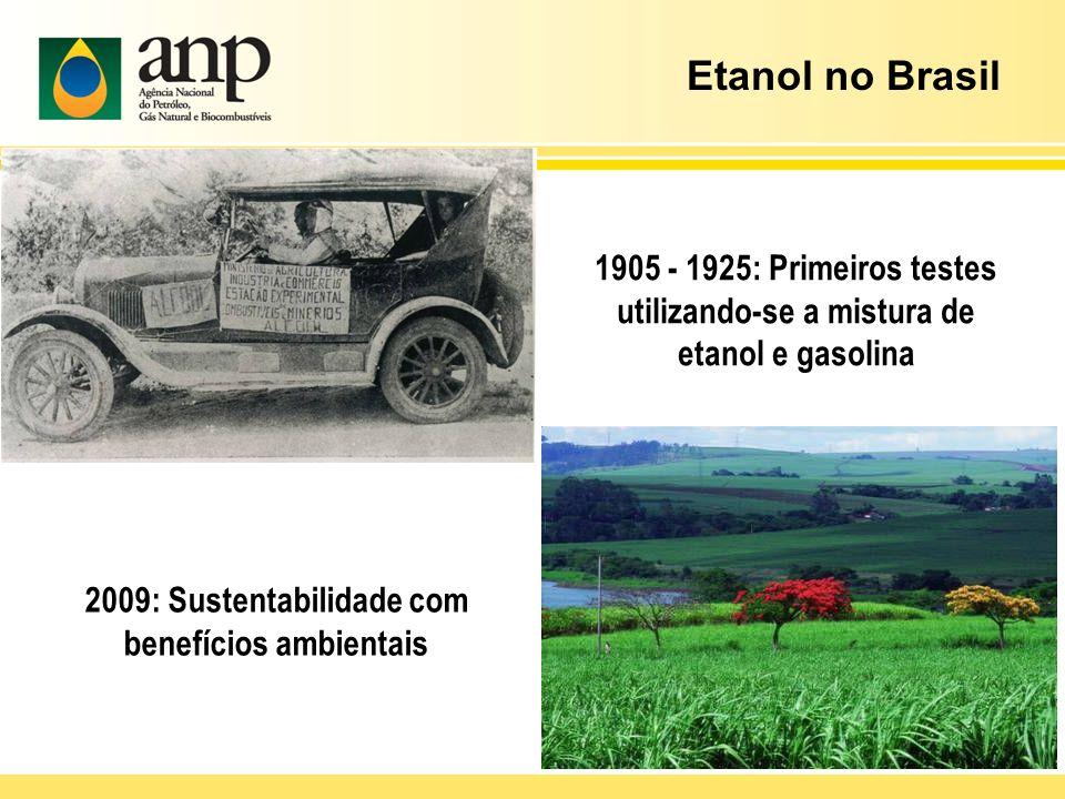 2009: Sustentabilidade com benefícios ambientais