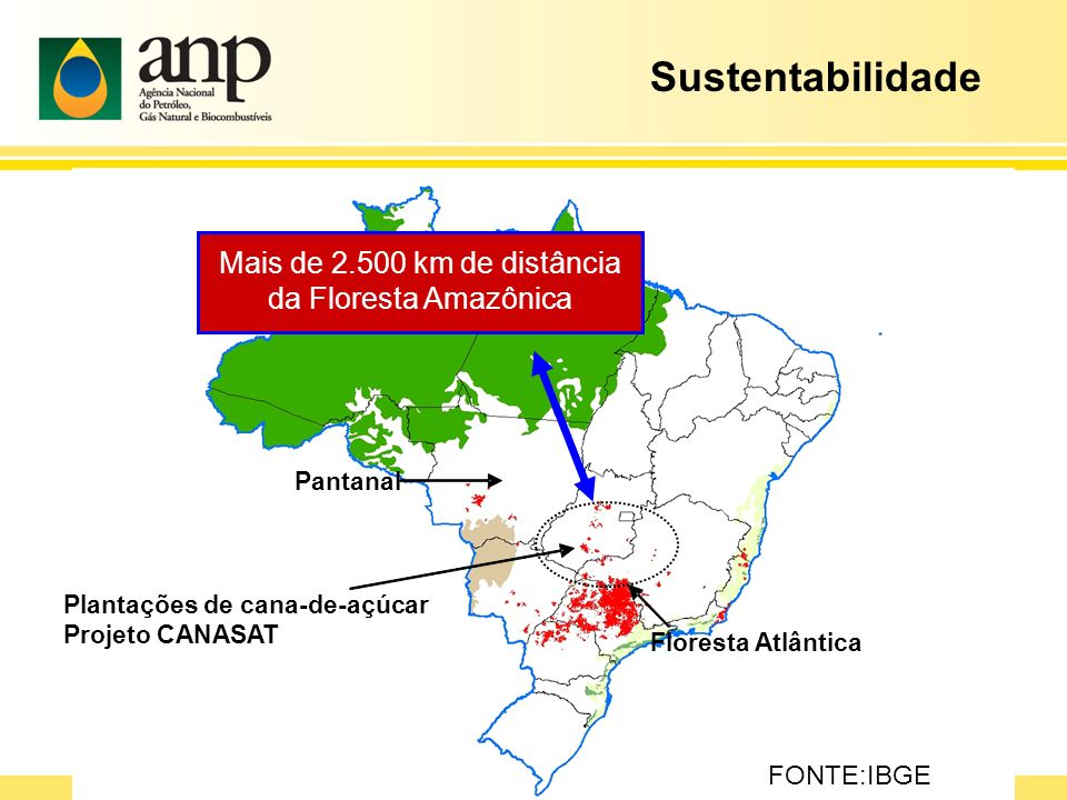 Mais de 2.500 km de distância da Floresta Amazônica