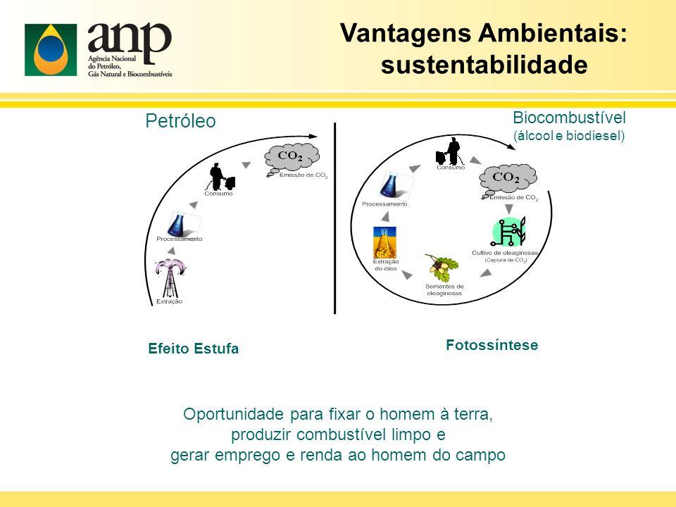 Vantagens Ambientais: