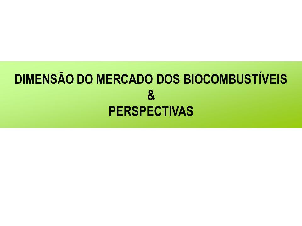 DIMENSÃO DO MERCADO DOS BIOCOMBUSTÍVEIS