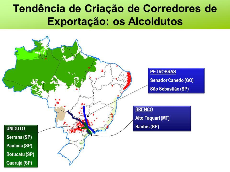 Tendência de Criação de Corredores de Exportação: os Alcoldutos