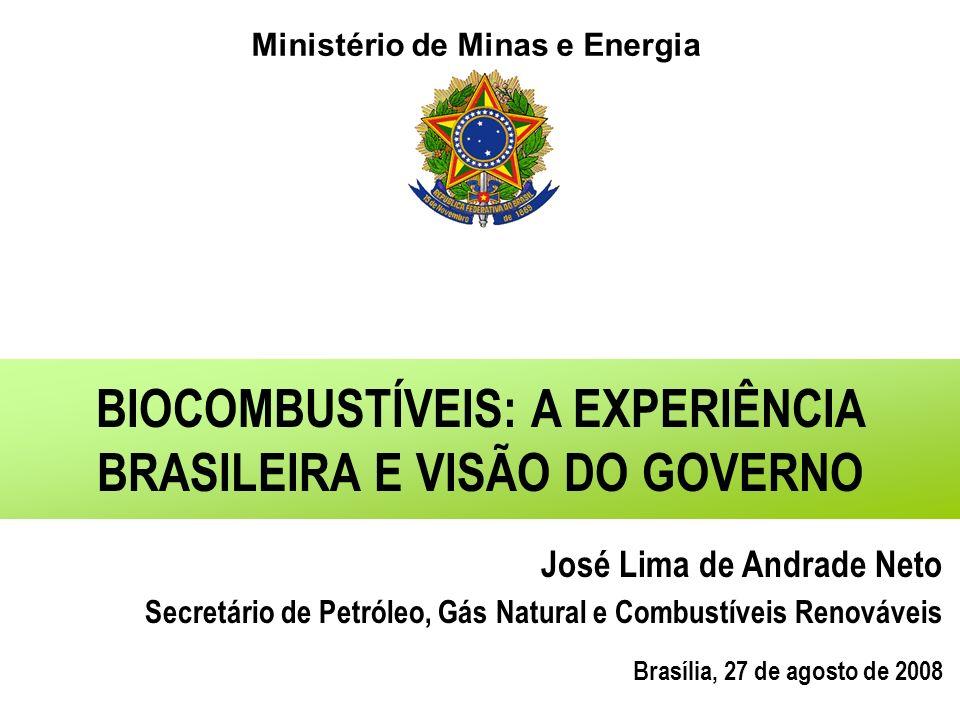 BIOCOMBUSTÍVEIS: A EXPERIÊNCIA BRASILEIRA E VISÃO DO GOVERNO