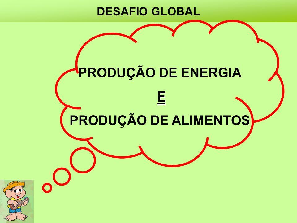 DESAFIO GLOBAL PRODUÇÃO DE ENERGIA X PRODUÇÃO DE ALIMENTOS E