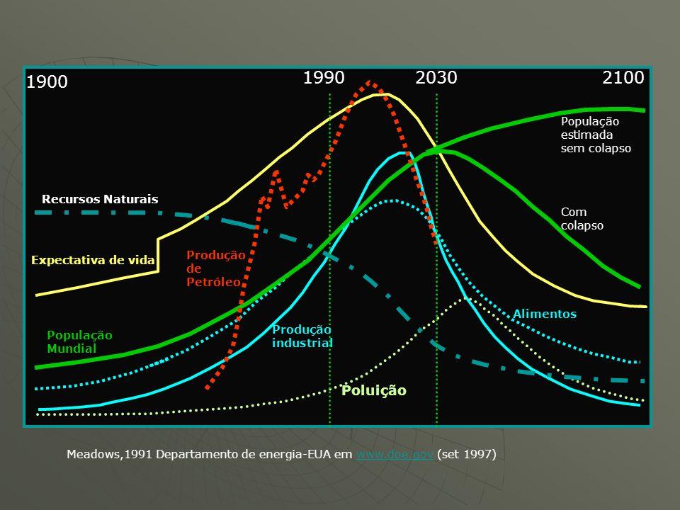 1990 2030 2100 1900 Poluição População estimada sem colapso