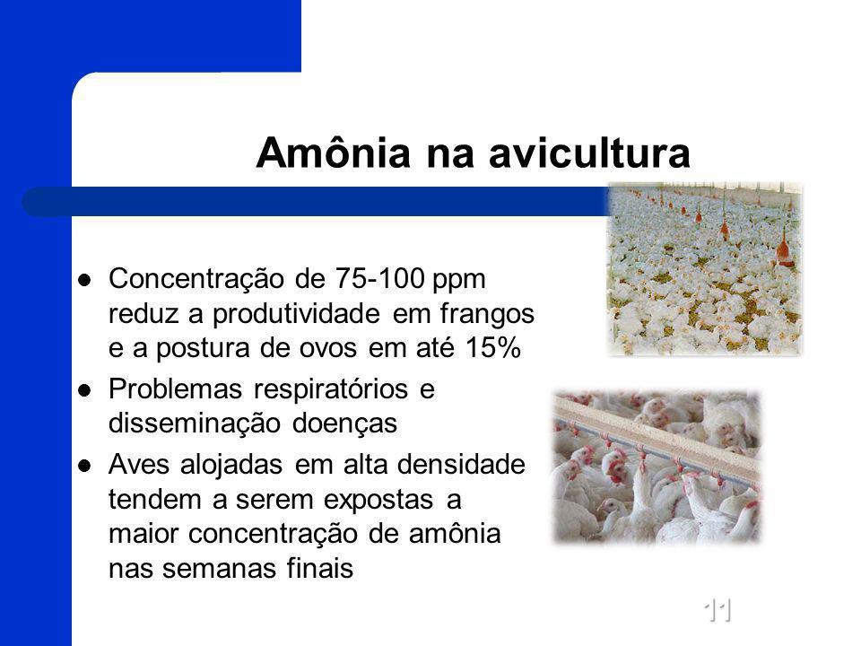 Amônia na avicultura Concentração de 75-100 ppm reduz a produtividade em frangos e a postura de ovos em até 15%