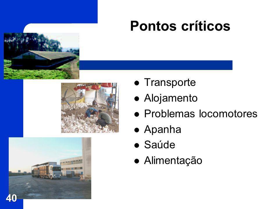 Pontos críticos Transporte Alojamento Problemas locomotores Apanha