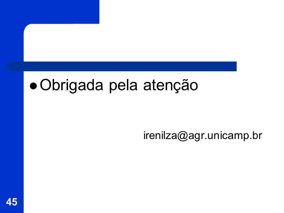 Obrigada pela atenção irenilza@agr.unicamp.br