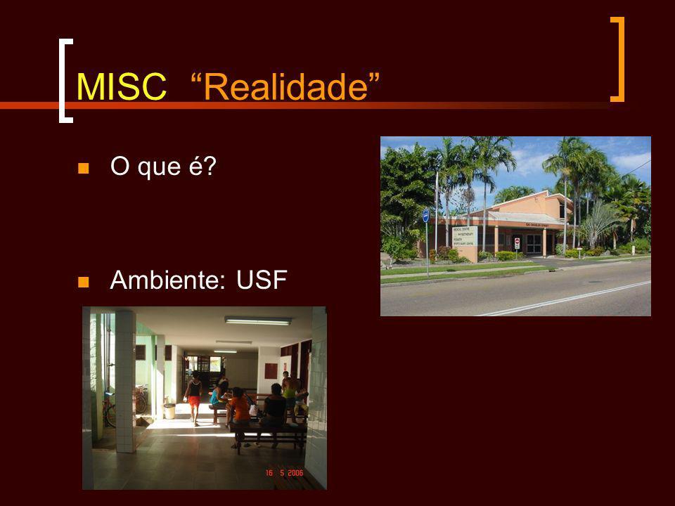 MISC Realidade O que é Ambiente: USF