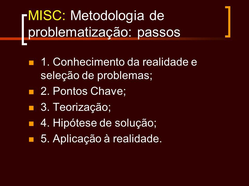 MISC: Metodologia de problematização: passos