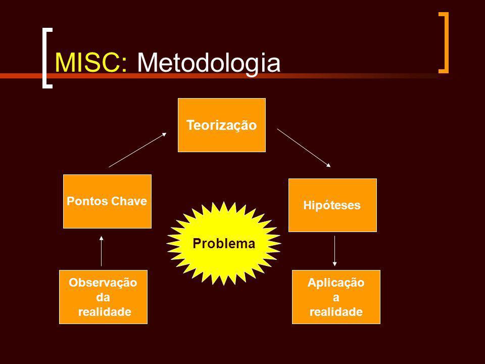 MISC: Metodologia Teorização Problema Pontos Chave Hipóteses
