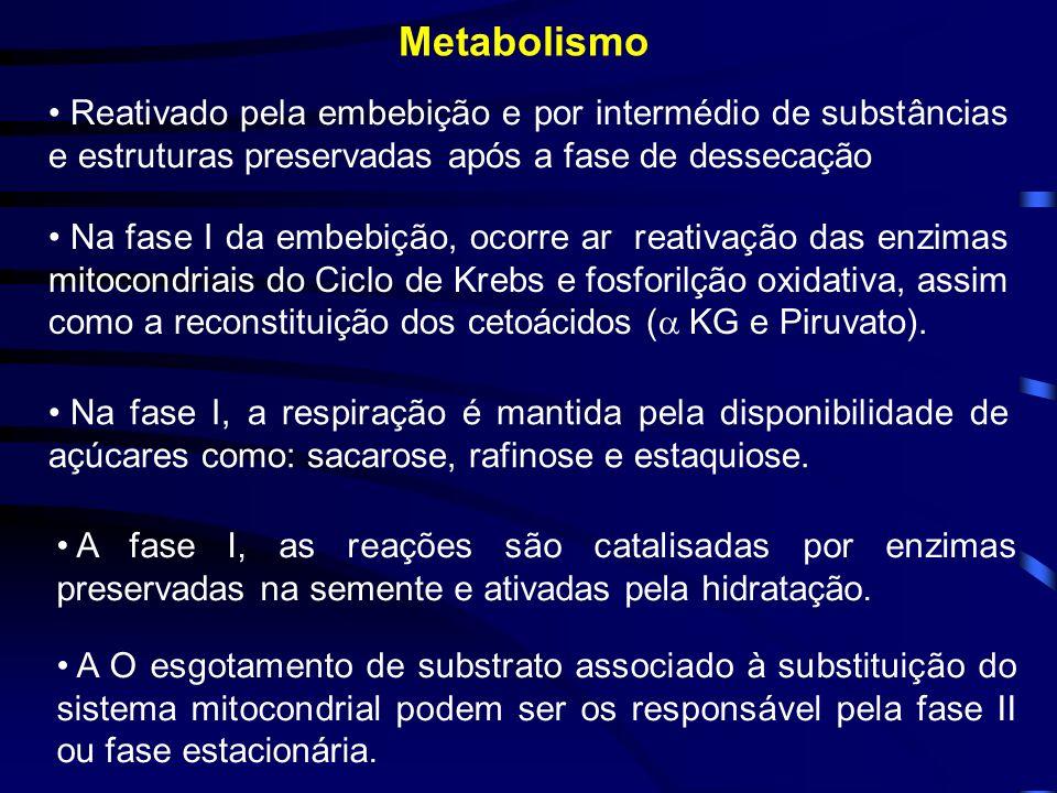 Metabolismo Reativado pela embebição e por intermédio de substâncias e estruturas preservadas após a fase de dessecação.
