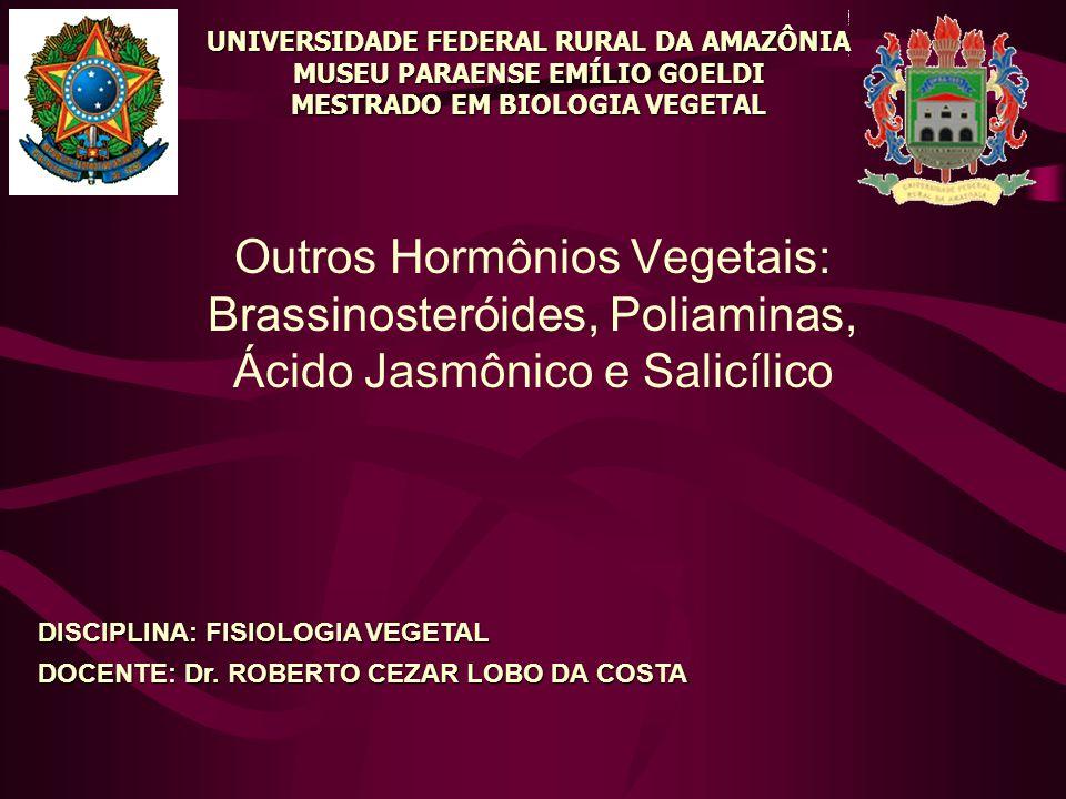 UNIVERSIDADE FEDERAL RURAL DA AMAZÔNIA MUSEU PARAENSE EMÍLIO GOELDI MESTRADO EM BIOLOGIA VEGETAL