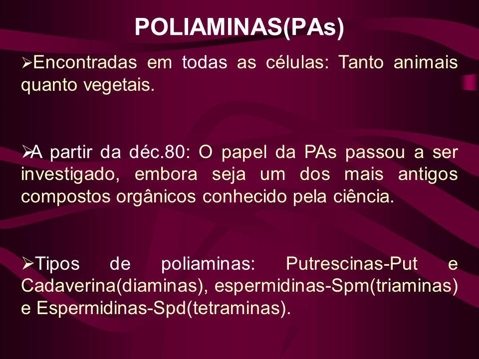 POLIAMINAS(PAs) Encontradas em todas as células: Tanto animais quanto vegetais.