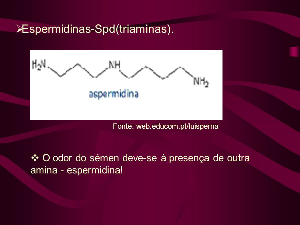 Espermidinas-Spd(triaminas).