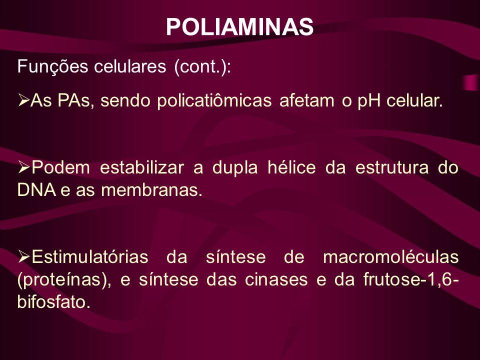 POLIAMINAS Funções celulares (cont.):
