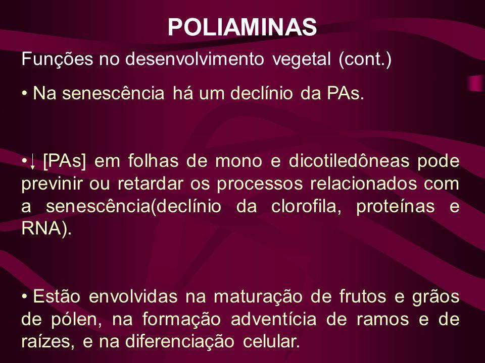 POLIAMINAS Funções no desenvolvimento vegetal (cont.)