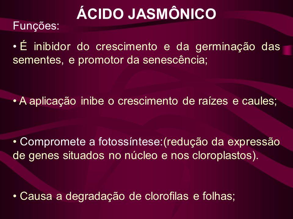 ÁCIDO JASMÔNICO Funções: