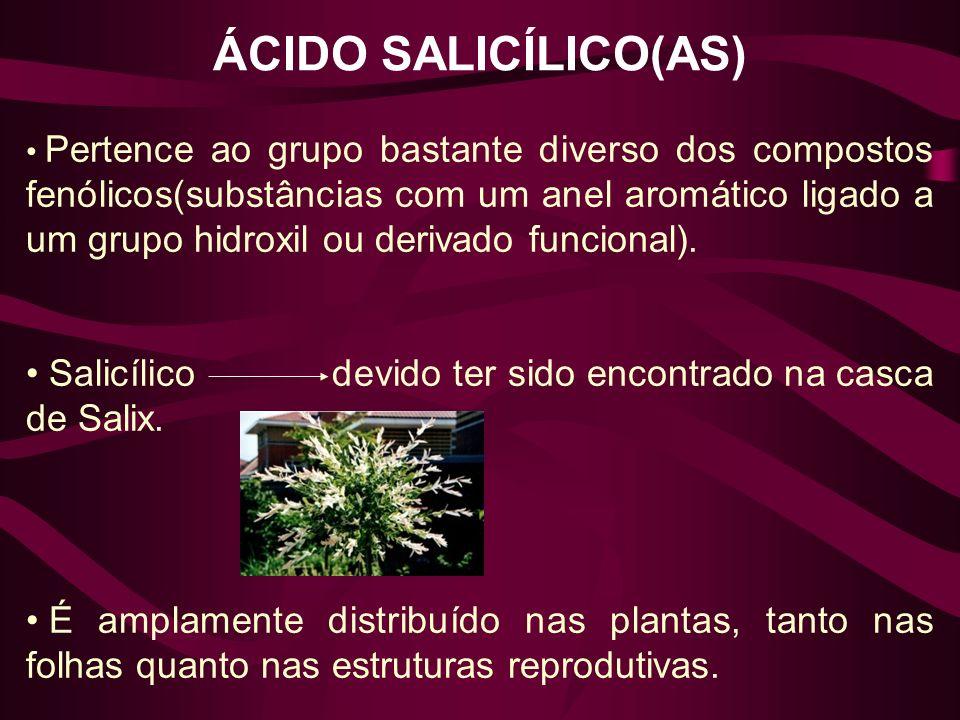 ÁCIDO SALICÍLICO(AS)