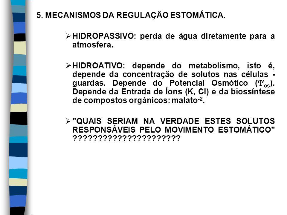 5. MECANISMOS DA REGULAÇÃO ESTOMÁTICA.