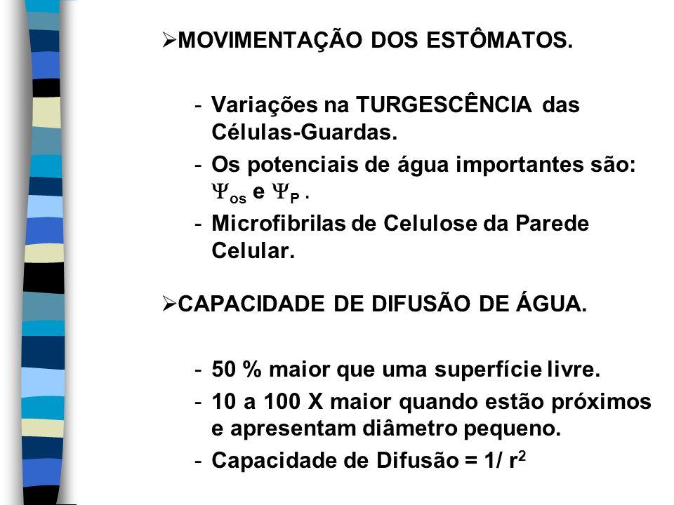 MOVIMENTAÇÃO DOS ESTÔMATOS.