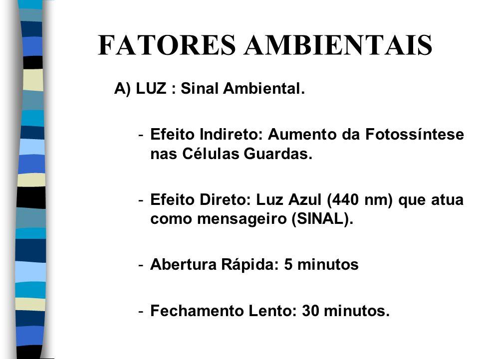 FATORES AMBIENTAIS A) LUZ : Sinal Ambiental.
