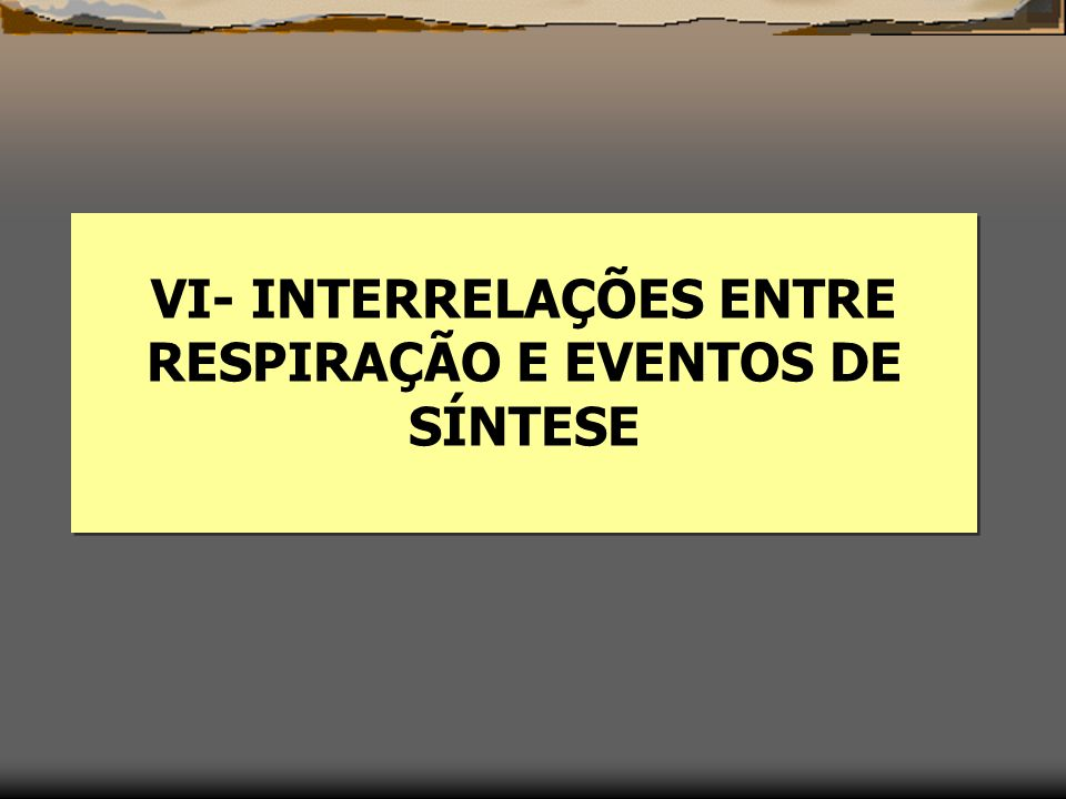 VI- INTERRELAÇÕES ENTRE RESPIRAÇÃO E EVENTOS DE SÍNTESE
