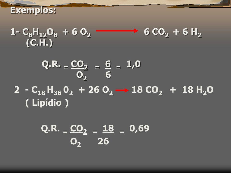 Exemplos: 1- C6H12O6 + 6 O2 6 CO2 + 6 H2 (C. H. ) Q. R