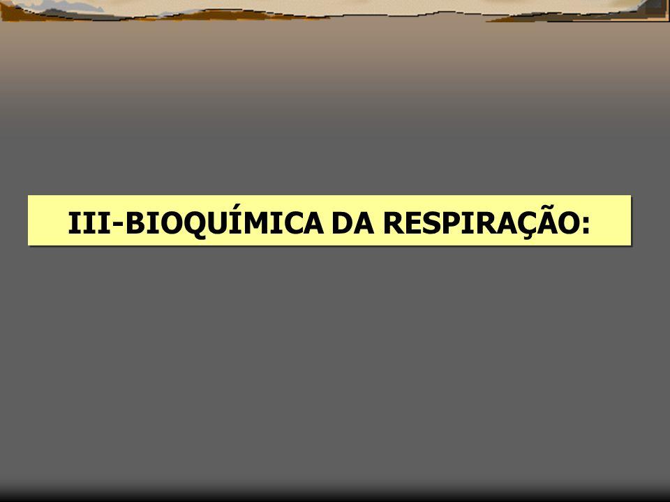 III-BIOQUÍMICA DA RESPIRAÇÃO: