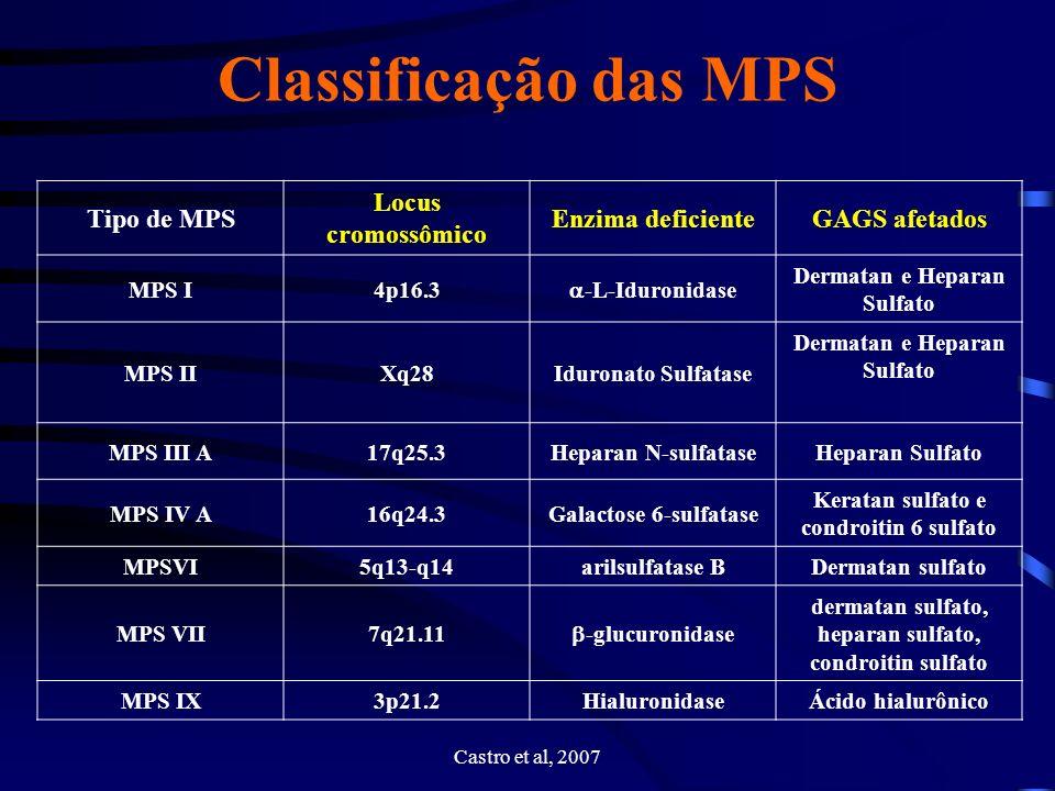Classificação das MPS Tipo de MPS Locus cromossômico Enzima deficiente