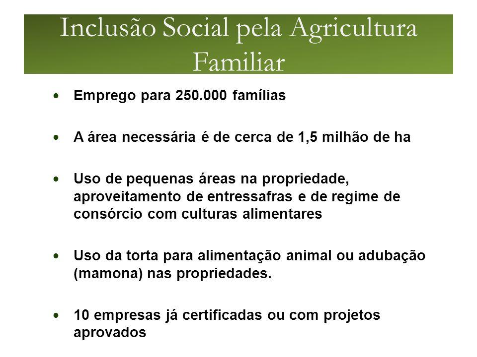 Inclusão Social pela Agricultura Familiar
