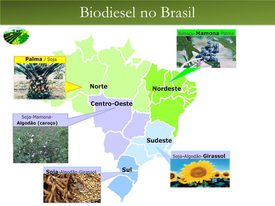 Biodiesel no Brasil BIODIESEL