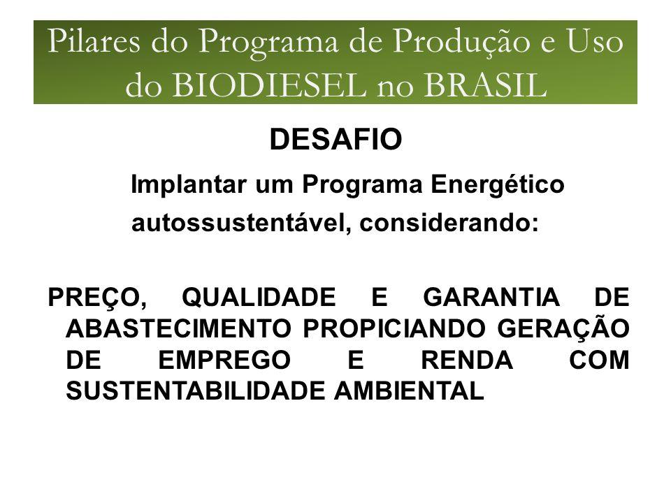Pilares do Programa de Produção e Uso do BIODIESEL no BRASIL