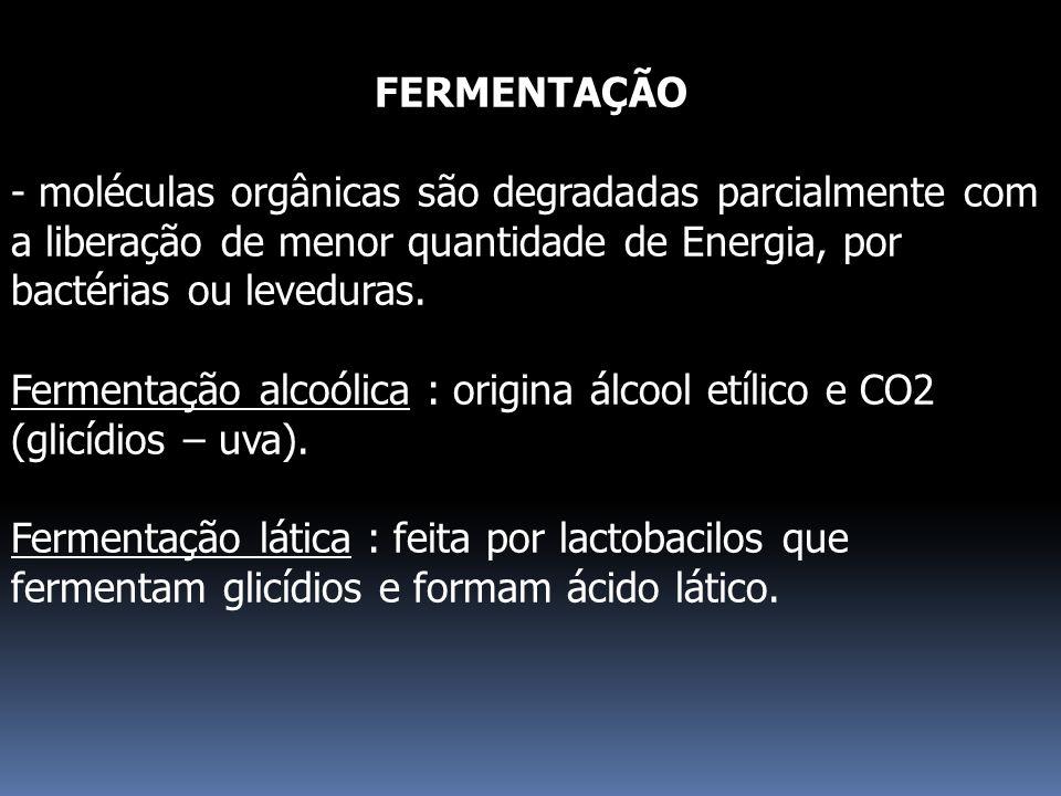 FERMENTAÇÃO - moléculas orgânicas são degradadas parcialmente com a liberação de menor quantidade de Energia, por bactérias ou leveduras.