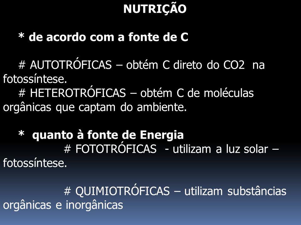 NUTRIÇÃO * de acordo com a fonte de C. # AUTOTRÓFICAS – obtém C direto do CO2 na fotossíntese.