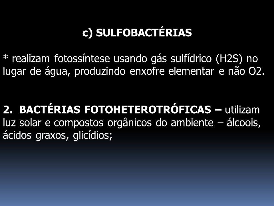 c) SULFOBACTÉRIAS * realizam fotossíntese usando gás sulfídrico (H2S) no lugar de água, produzindo enxofre elementar e não O2.