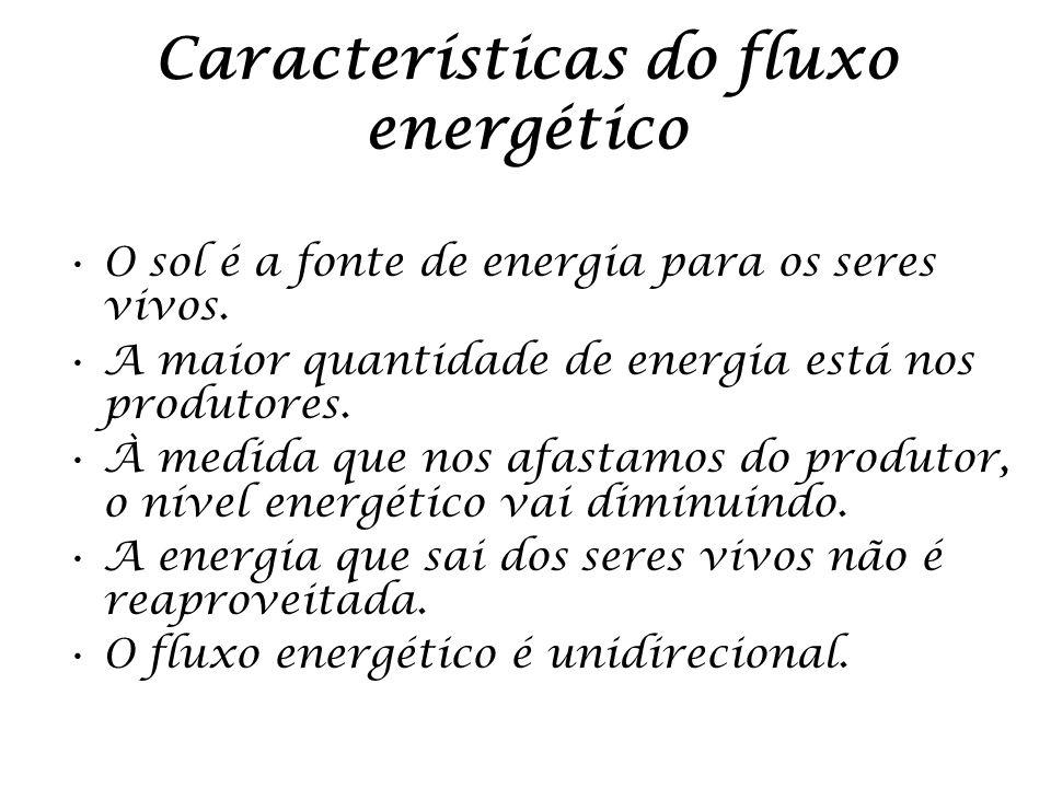Características do fluxo energético