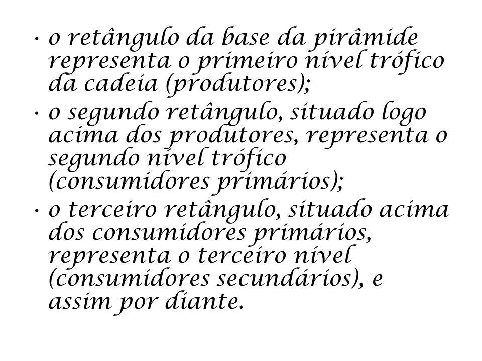 o retângulo da base da pirâmide representa o primeiro nível trófico da cadeia (produtores);