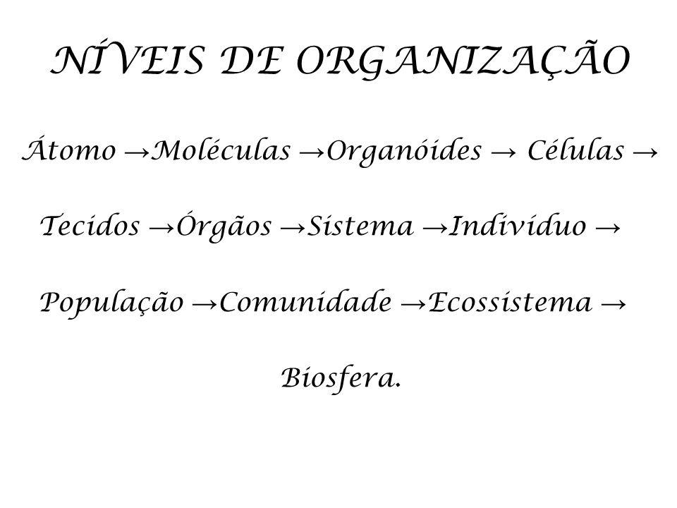 NÍVEIS DE ORGANIZAÇÃO Átomo →Moléculas →Organóides → Células →