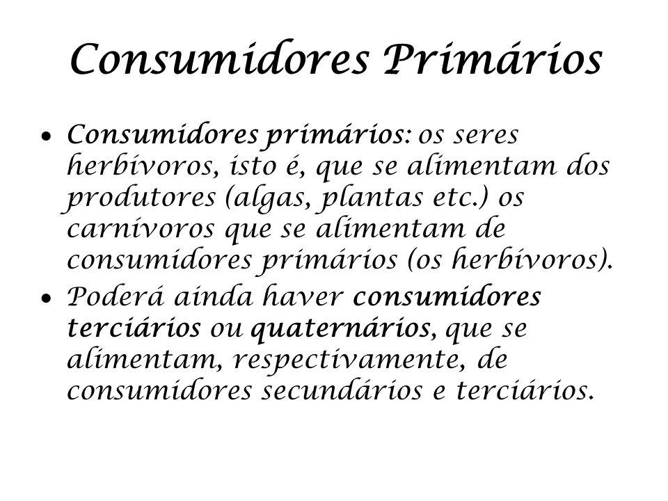 Consumidores Primários