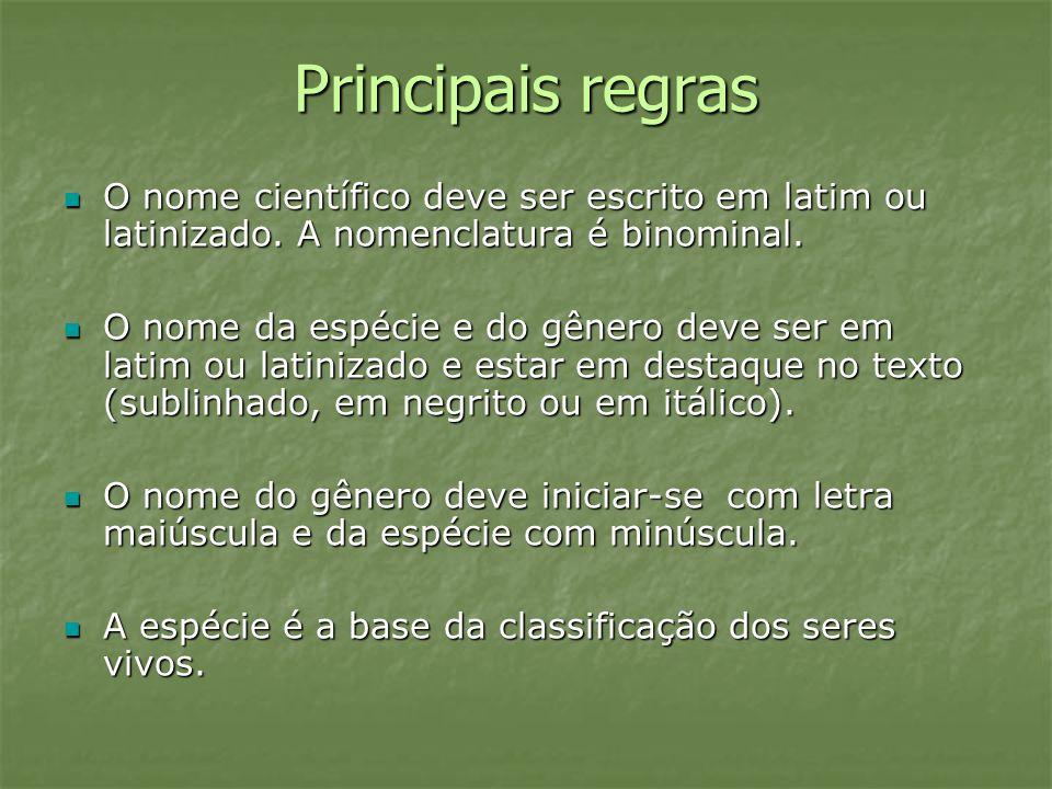Principais regras O nome científico deve ser escrito em latim ou latinizado. A nomenclatura é binominal.