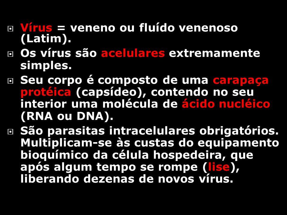 Vírus = veneno ou fluído venenoso (Latim).