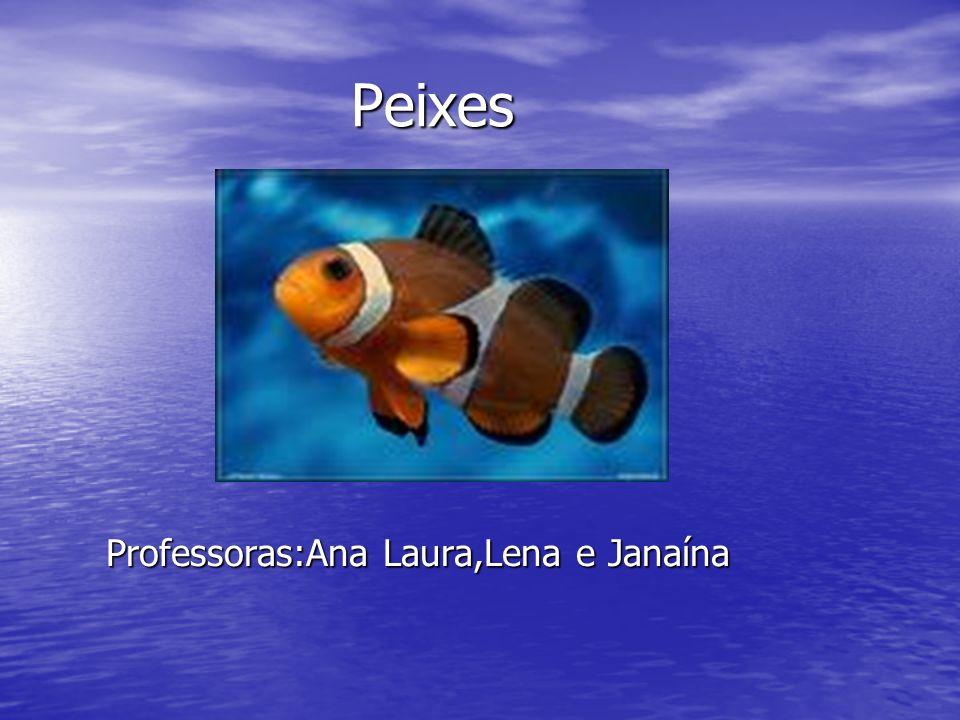 Peixes Professoras:Ana Laura,Lena e Janaína