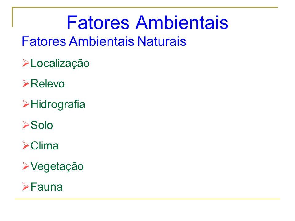 Fatores Ambientais Fatores Ambientais Naturais Localização Relevo