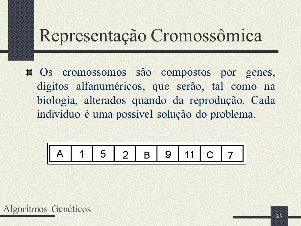 Representação Cromossômica