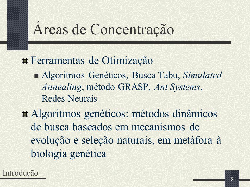Áreas de Concentração Ferramentas de Otimização