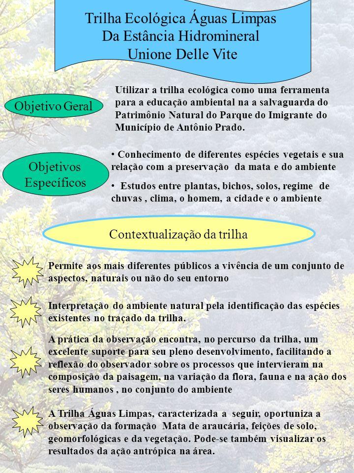 Trilha Ecológica Águas Limpas Da Estância Hidromineral