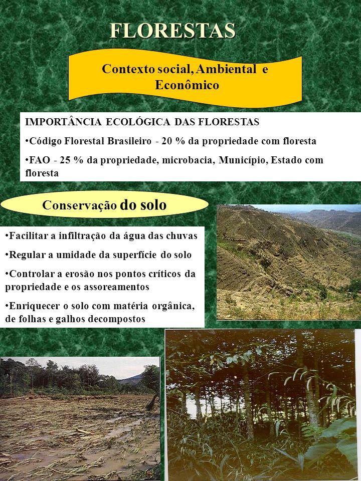 Contexto social, Ambiental e